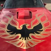 76 Trans Am SE **REDUCED**28K MILES**ALL DOCUMENTS FROM NEW**Hurst T