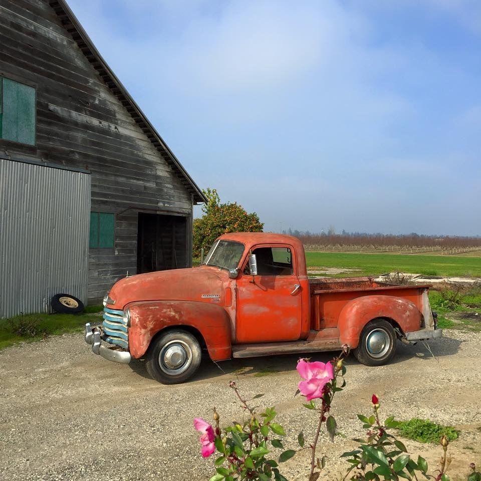 1950 Chevrolet Pick Up Original 1949 1951 1952 1953 1954 1955 Farm To Ford Pickup Truck Other Pickups 3100half Tonshort Bedcalifornia
