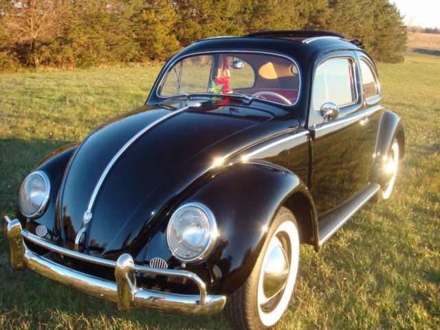 1955 Vw Volkswagen Ragtop Beetle Oval Bug With Semaphores