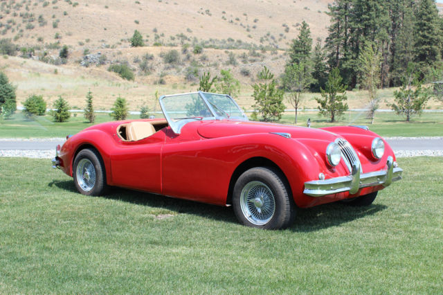 1956 jaguar xk140 roadster replica kit car xk120 xk. Black Bedroom Furniture Sets. Home Design Ideas