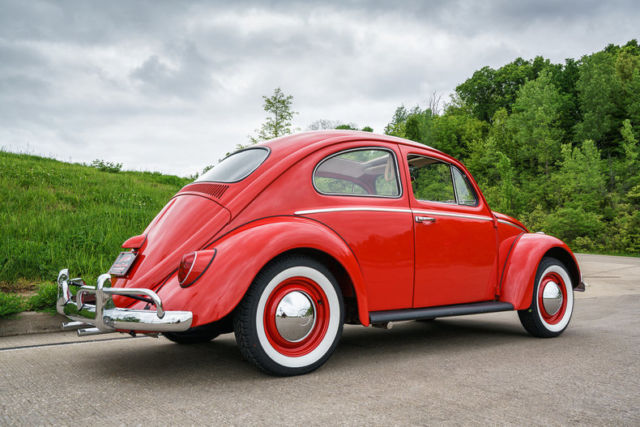 1964 volkswagen beetle factory sunroof new wheels and tires nicely restored. Black Bedroom Furniture Sets. Home Design Ideas