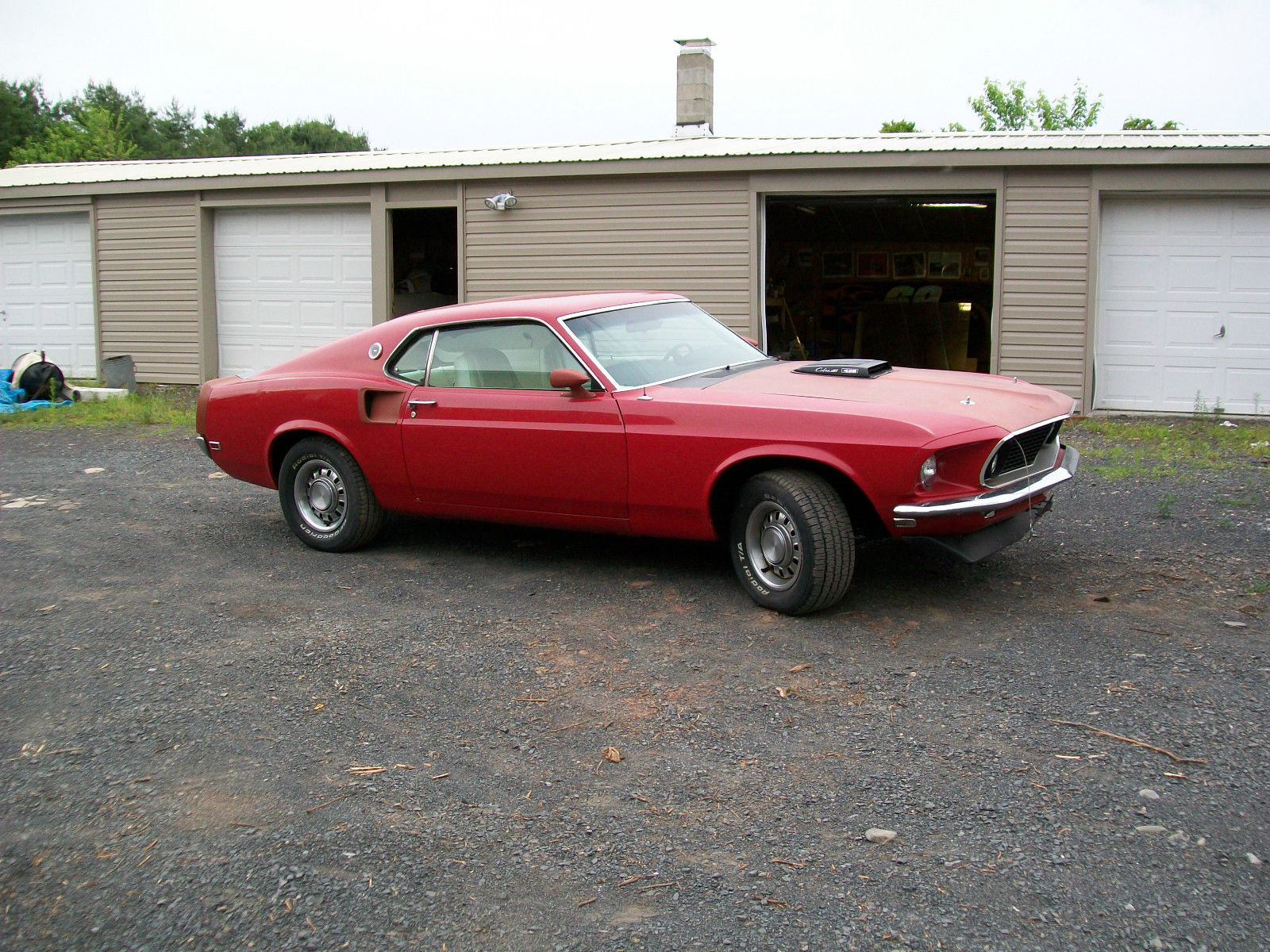 1969 Ford Mustang 390 Mach 1 With 428 Super Cobra Jet For Sale In Shelby
