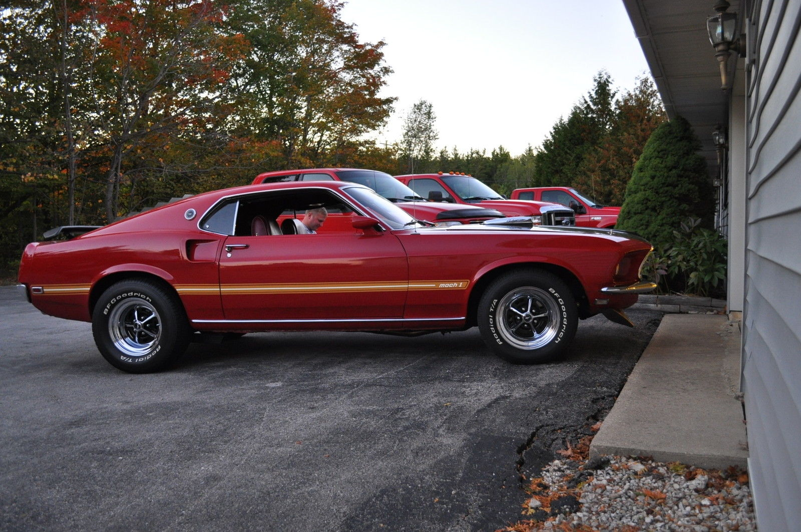 1969 ford mustang mach 1 428 cobra jet for sale in sister. Black Bedroom Furniture Sets. Home Design Ideas