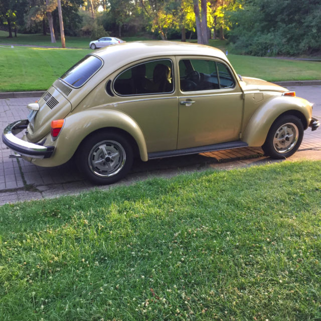 1974 vw beetle vin number location vw beetle oil pressure