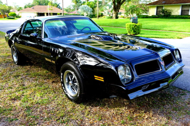 1976 firebird trans am 400 v8 2 dr coupe all original show. Black Bedroom Furniture Sets. Home Design Ideas