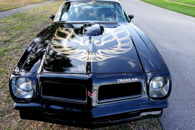 1976 Firebird Trans Am 400 V8 2 Dr Coupe All Original Show