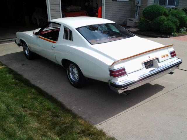 1977 pontiac lemans sport coupe can am for sale in williamsport pennsylvania united states. Black Bedroom Furniture Sets. Home Design Ideas