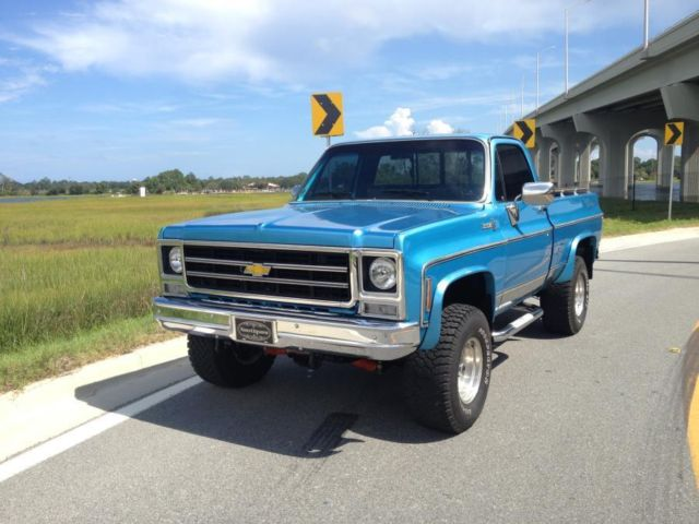 1979 chevrolet bonanza custom 4x4 show truck for sale in jacksonville beach florida united states. Black Bedroom Furniture Sets. Home Design Ideas