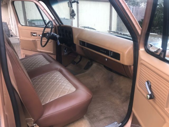 1979 chevrolet c10 patina shop truck scottsdale. Black Bedroom Furniture Sets. Home Design Ideas