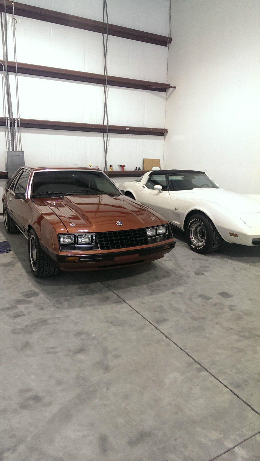 1979 Mustang 5 0 For Sale In Deland Florida United States