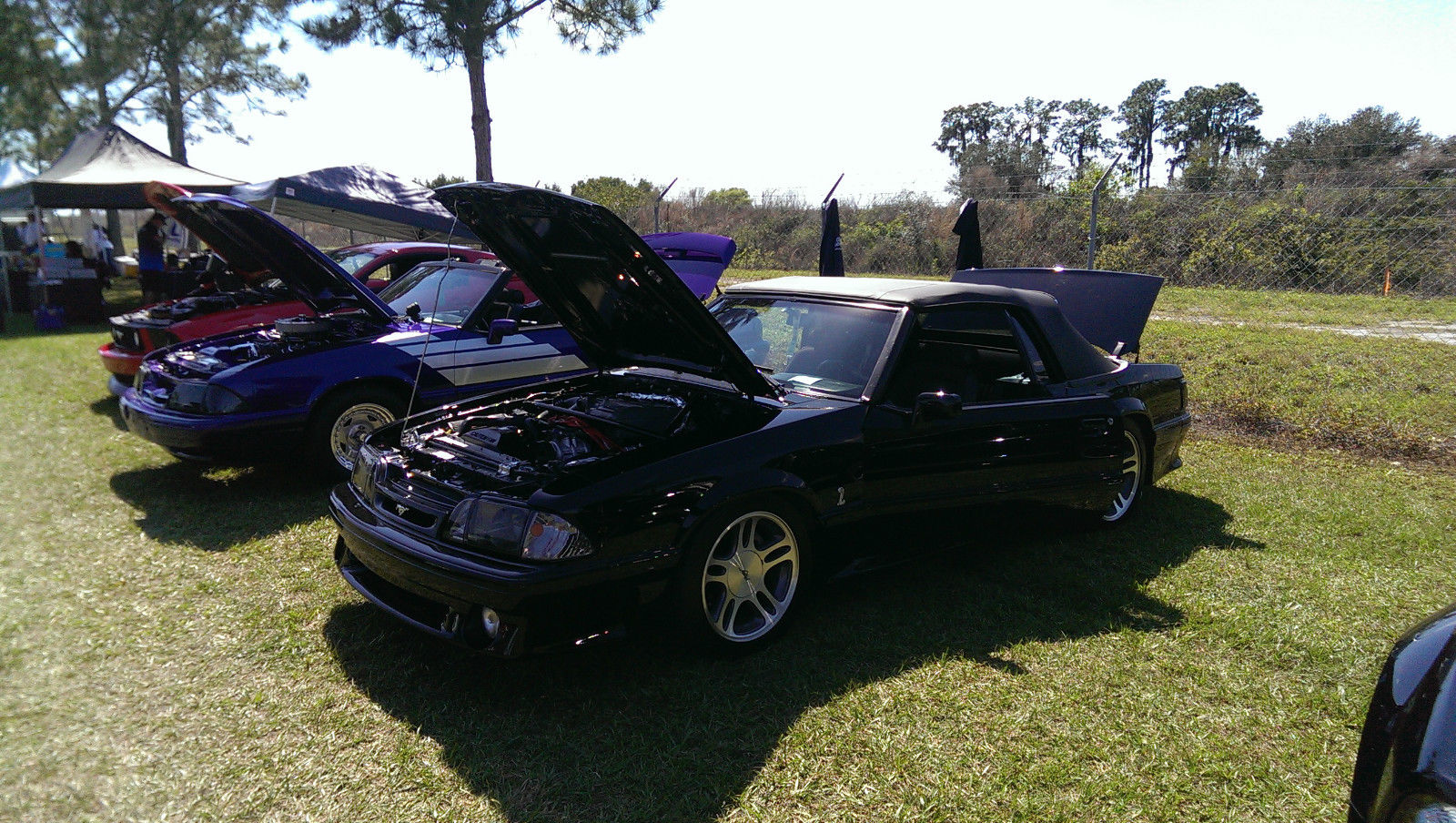 1990 Mustang GT Modified with a 1993 Cobra Engine ...