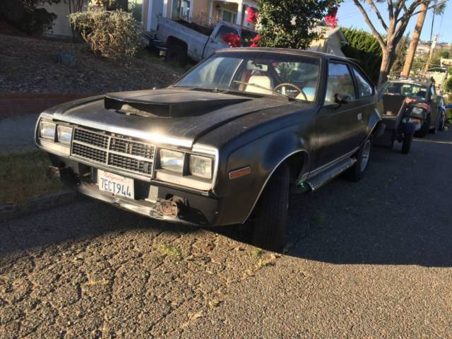 AMC Spirit Rally Fighter for sale: photos, technical ...