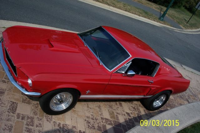 Al Packer Ford East >> BEST LOOKING YEAR FASTBACK MUSCLE CAR-SHELBY SIDE SCOOPS-CANDY APPLE RED for sale in North East ...