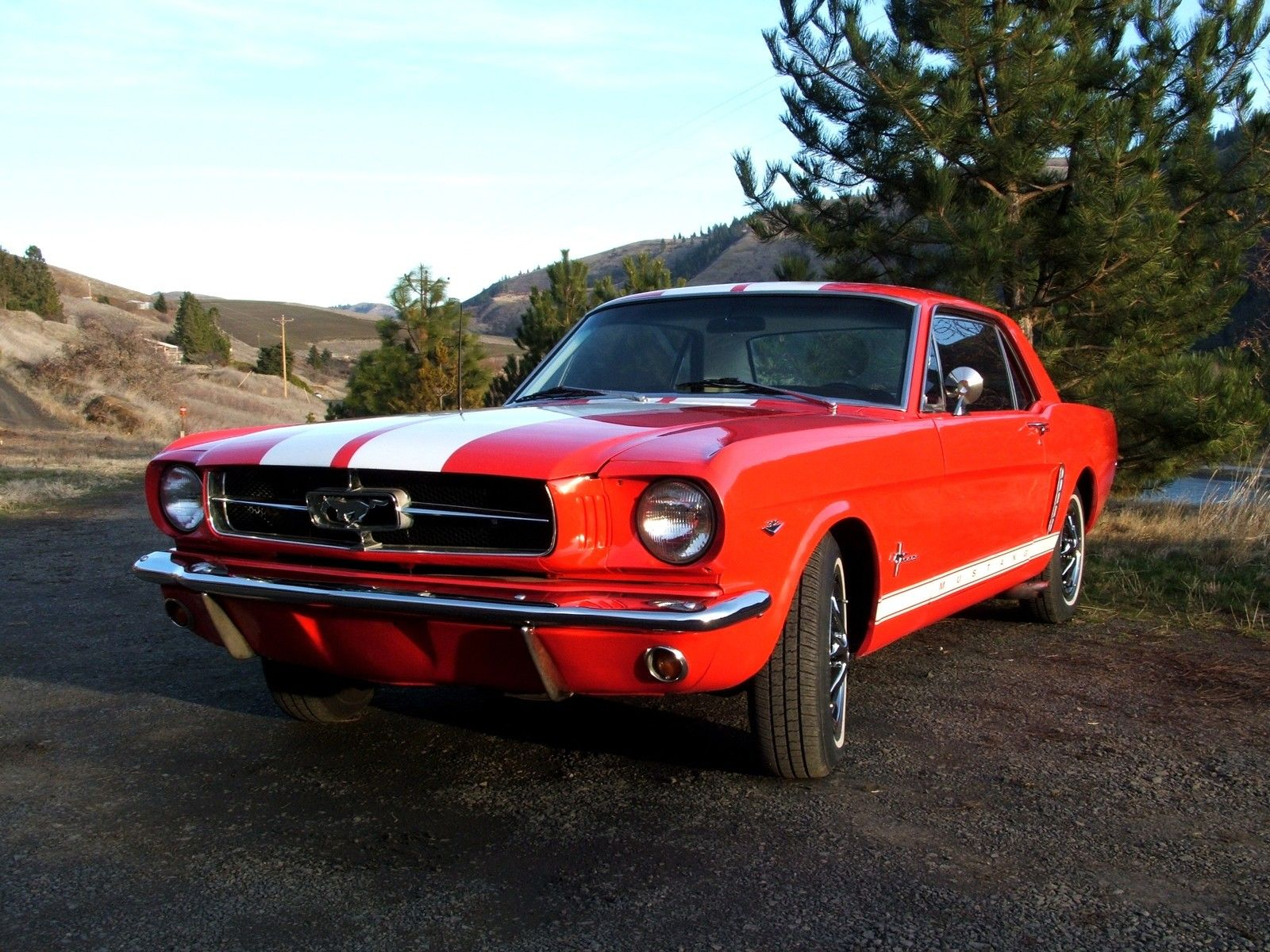 1966 ford mustang vin location 1966 ford mustang msrp. Black Bedroom Furniture Sets. Home Design Ideas